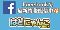 ぱどにゃんこ facebook